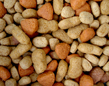 Pet food photo